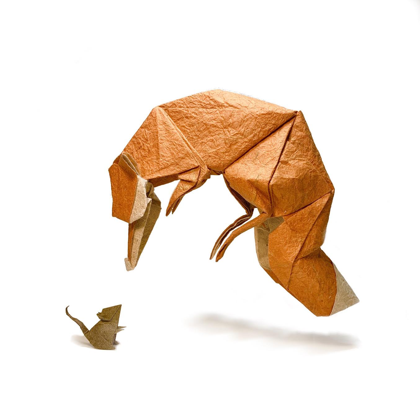 Beth Johnson Origami African bush elephant asian elephant african forest elephant, elephant. beth johnson origami