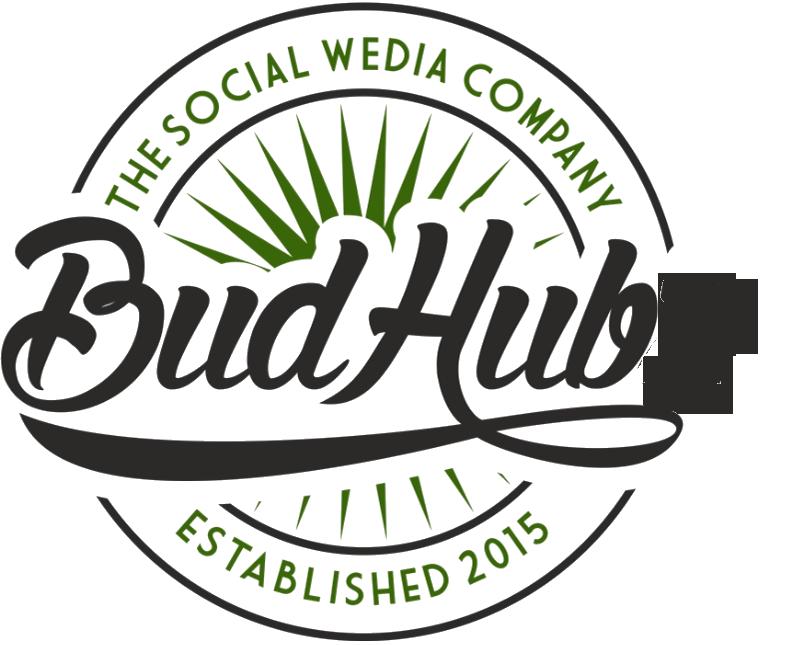 budhubz logo.png