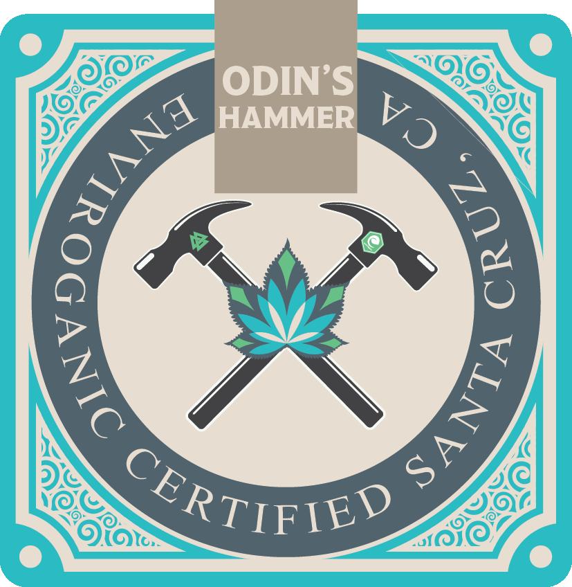 Odin's Hammer Logo #1.png
