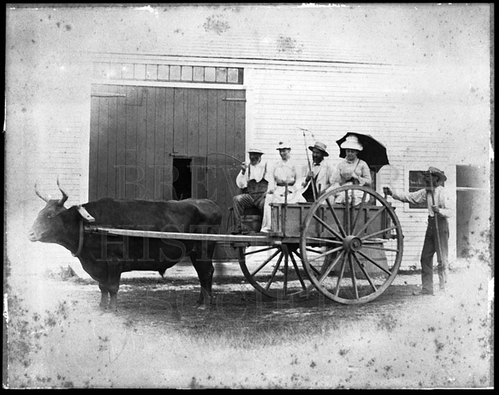 28. 1970.10.230 Oxcart with Unidentified People c.1900 – photographer unknown