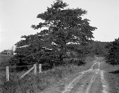 40. 1970.10.104 – Breakwater Road