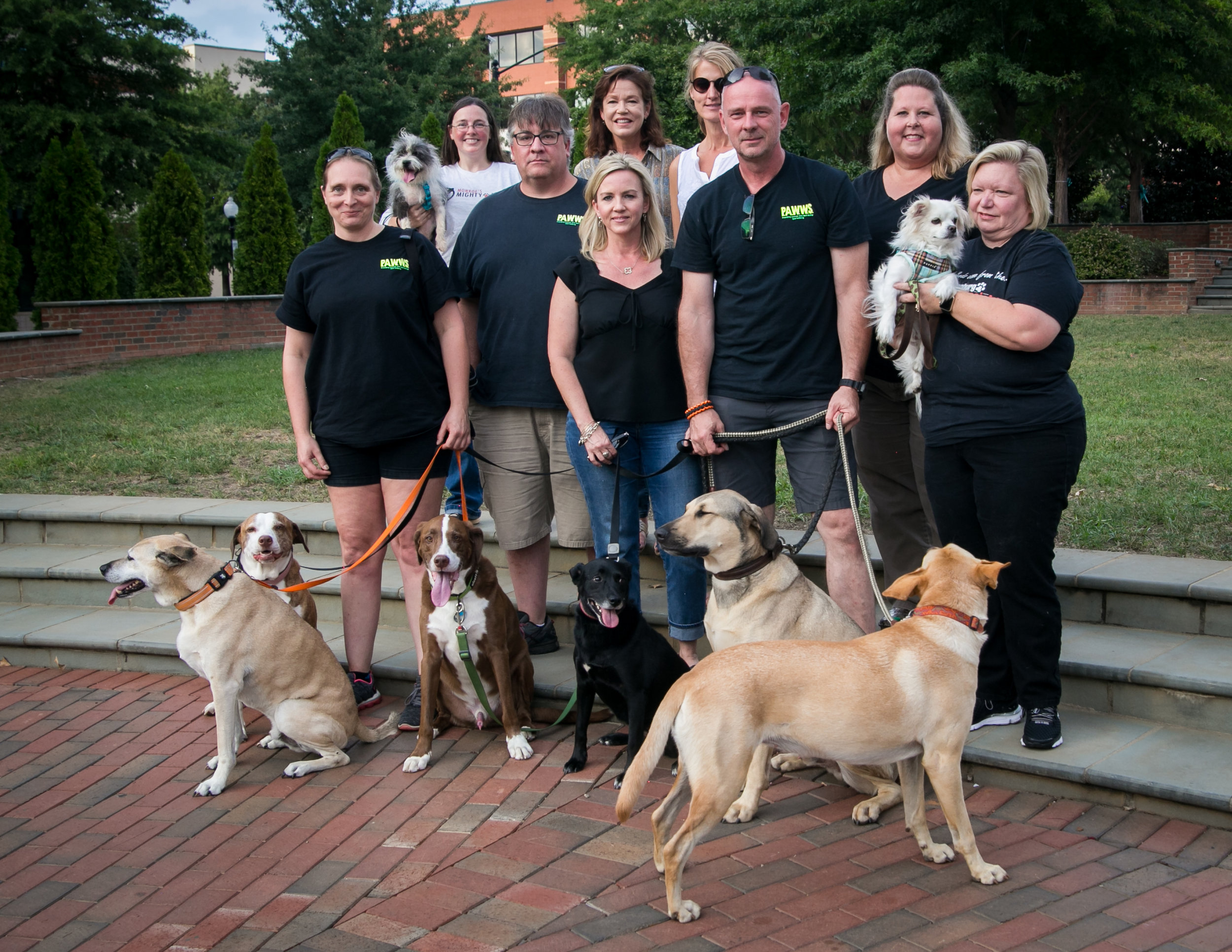 2015 Hub City Animal Project Grant Recipients - Monroe's Mighty Mission, Project PAWWS, Animal Allies, and the Spartanburg Humane Society