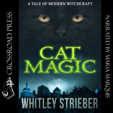 CAT MAGIC PIC.jpg
