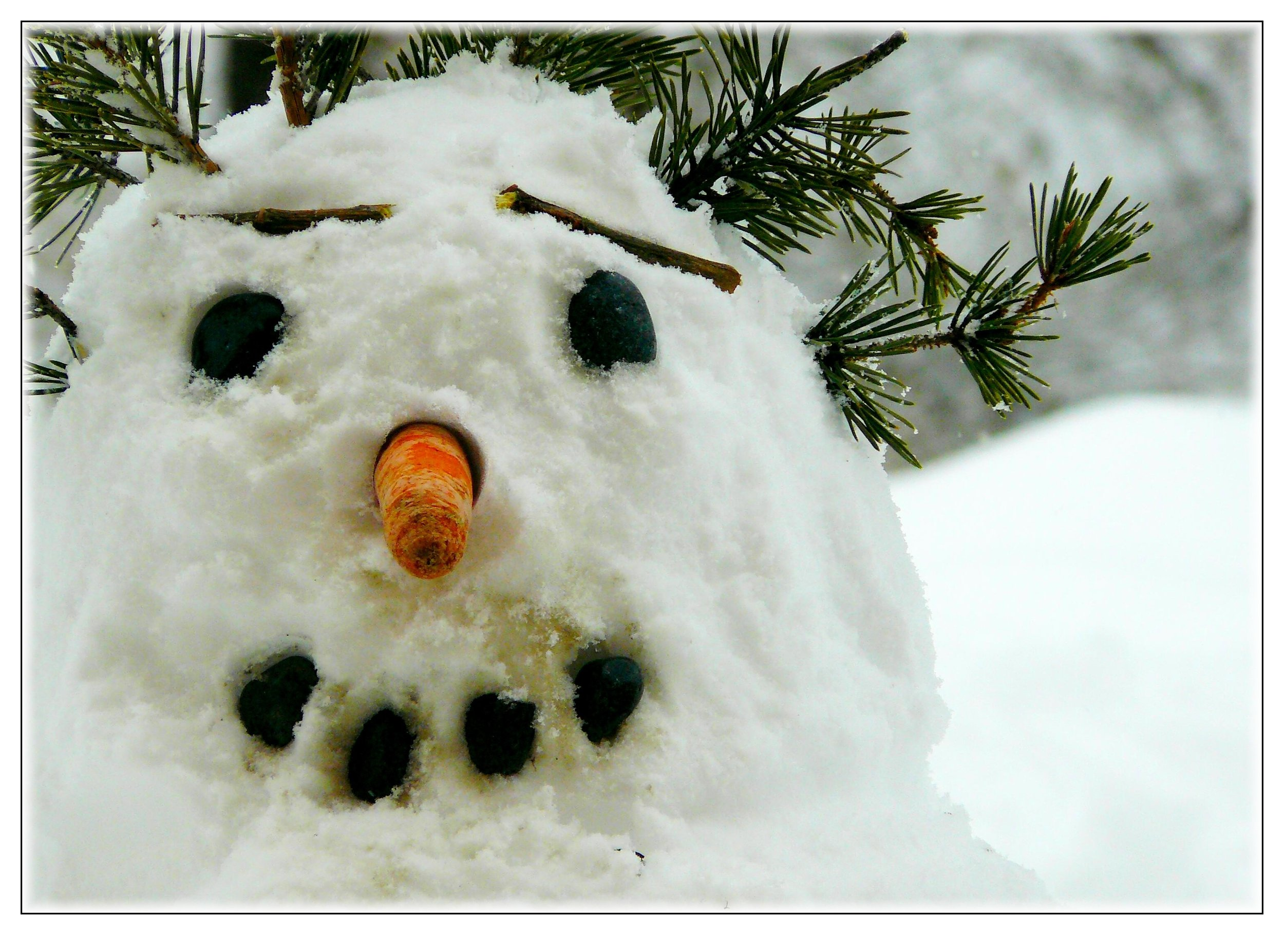 snowman-250070.jpg
