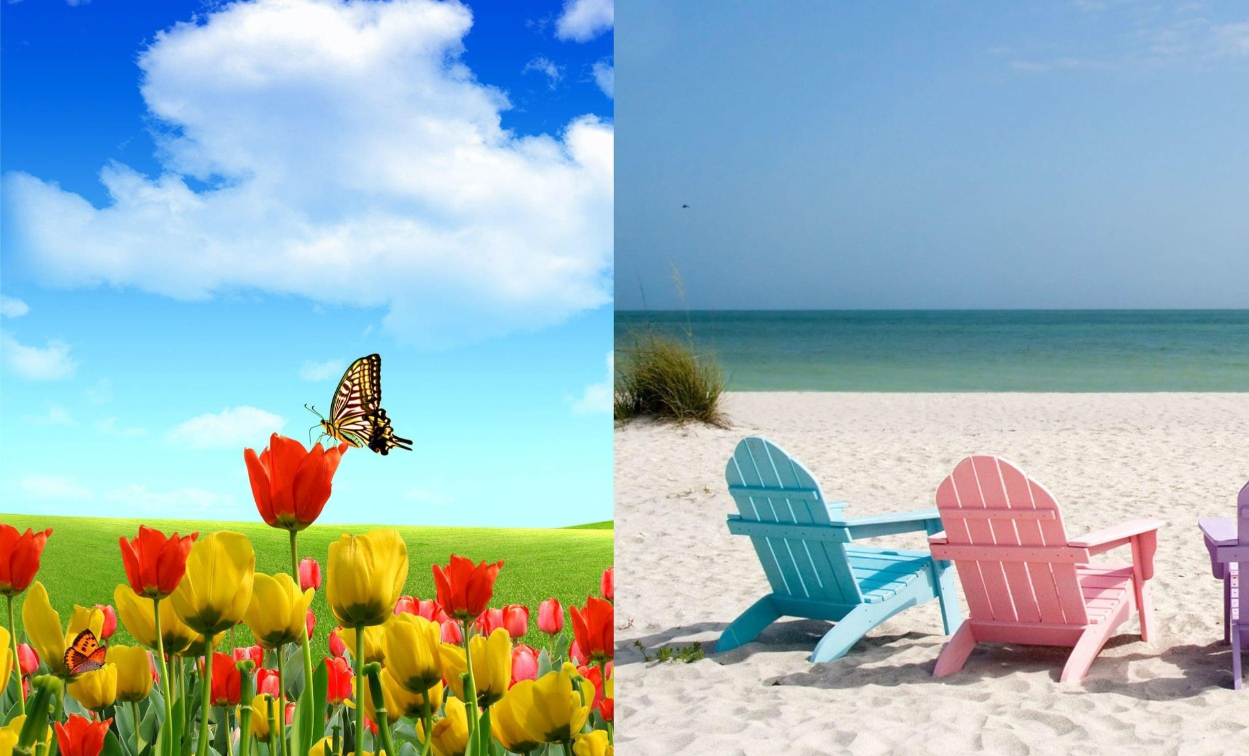 Spring_Summer.jpg
