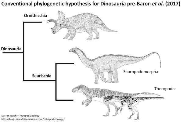 Image from the  Tetrapod Zoology blog .