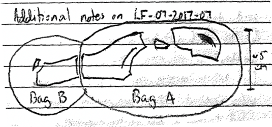 One of the author's field sketches.