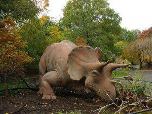 Beazley at the zoo.jpg