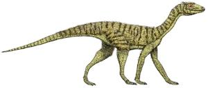 Silesaurus   Not a dinosaur