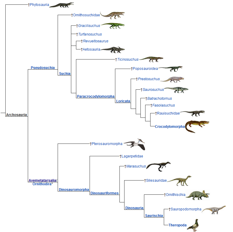 Wikipedia's version of Stirling Nesbitt's  2011 analysis