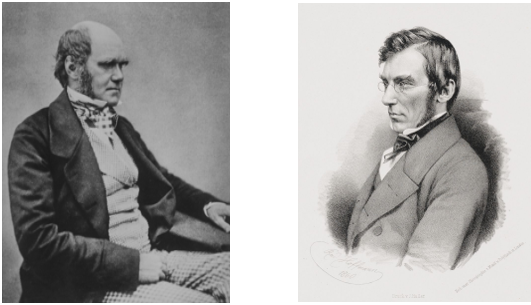 Charles Darwin  (left) and  Joseph Hooker  (right)