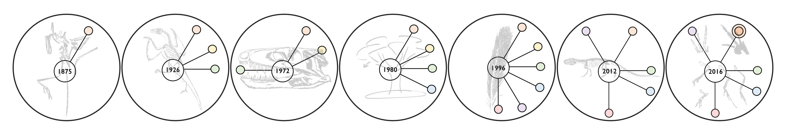 "Figure 4 from Havstad & Smith's ""Fossils with Feathers and Philosophy of Science,"" forthcoming in  Systematic Biology ."