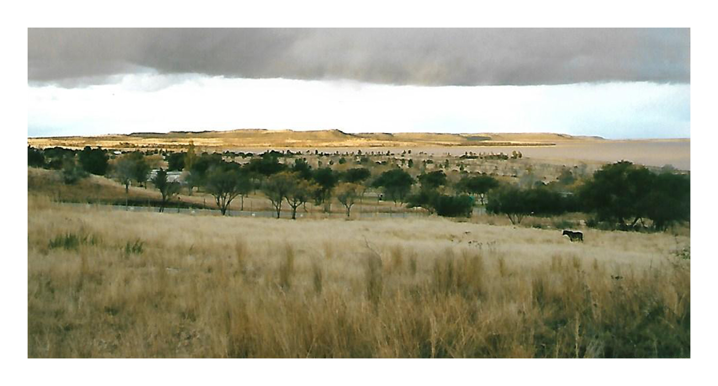 A view of the veld at Willem Pretorius Nature Reserve in June 1996, during winter in South Africa. Photo by Cynthia Havstad.