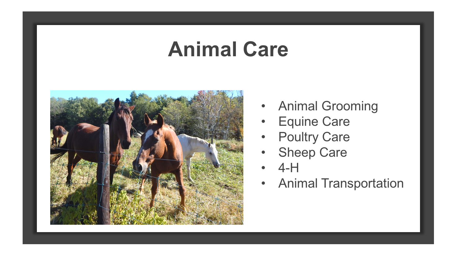 AnimalCare.png