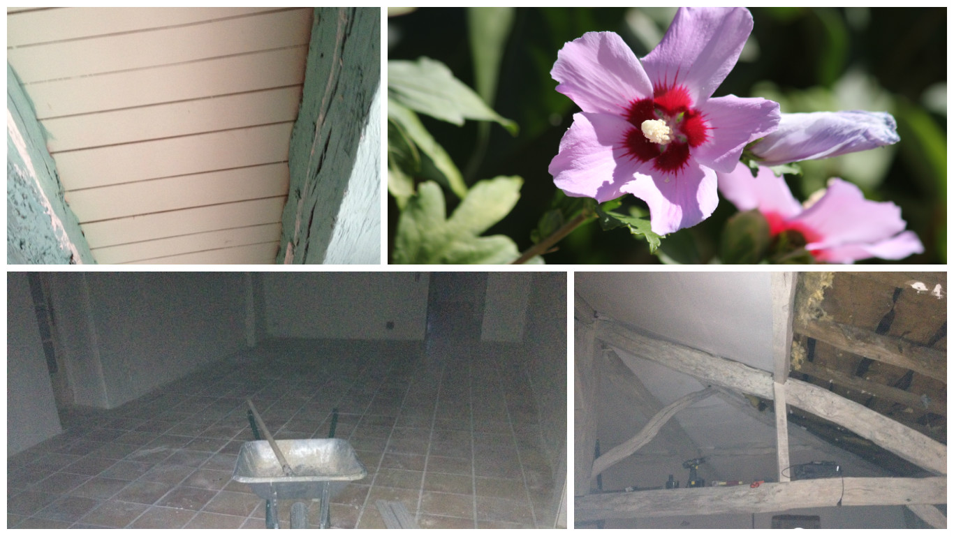 1. Top left, the beams in the summer kitchen before sandblasting. 2. Top right the hibiscus in the garden (to add colour to the picture again).  3. Bottom left the summer lounge. 4. The grenier.