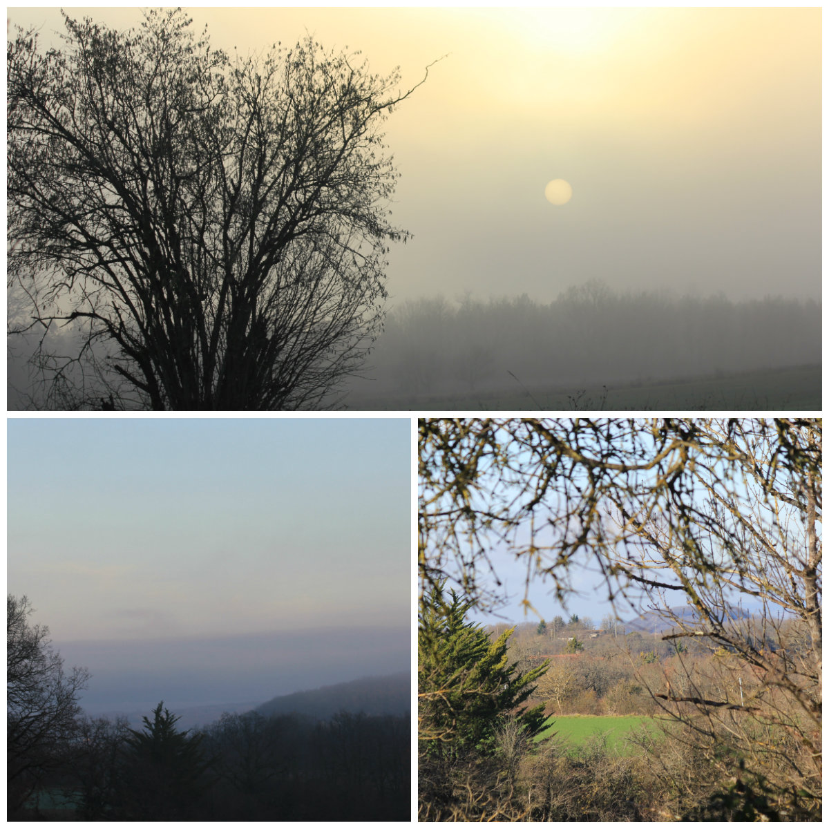 The sun breaking through the morning mist and northern views. January 2016.
