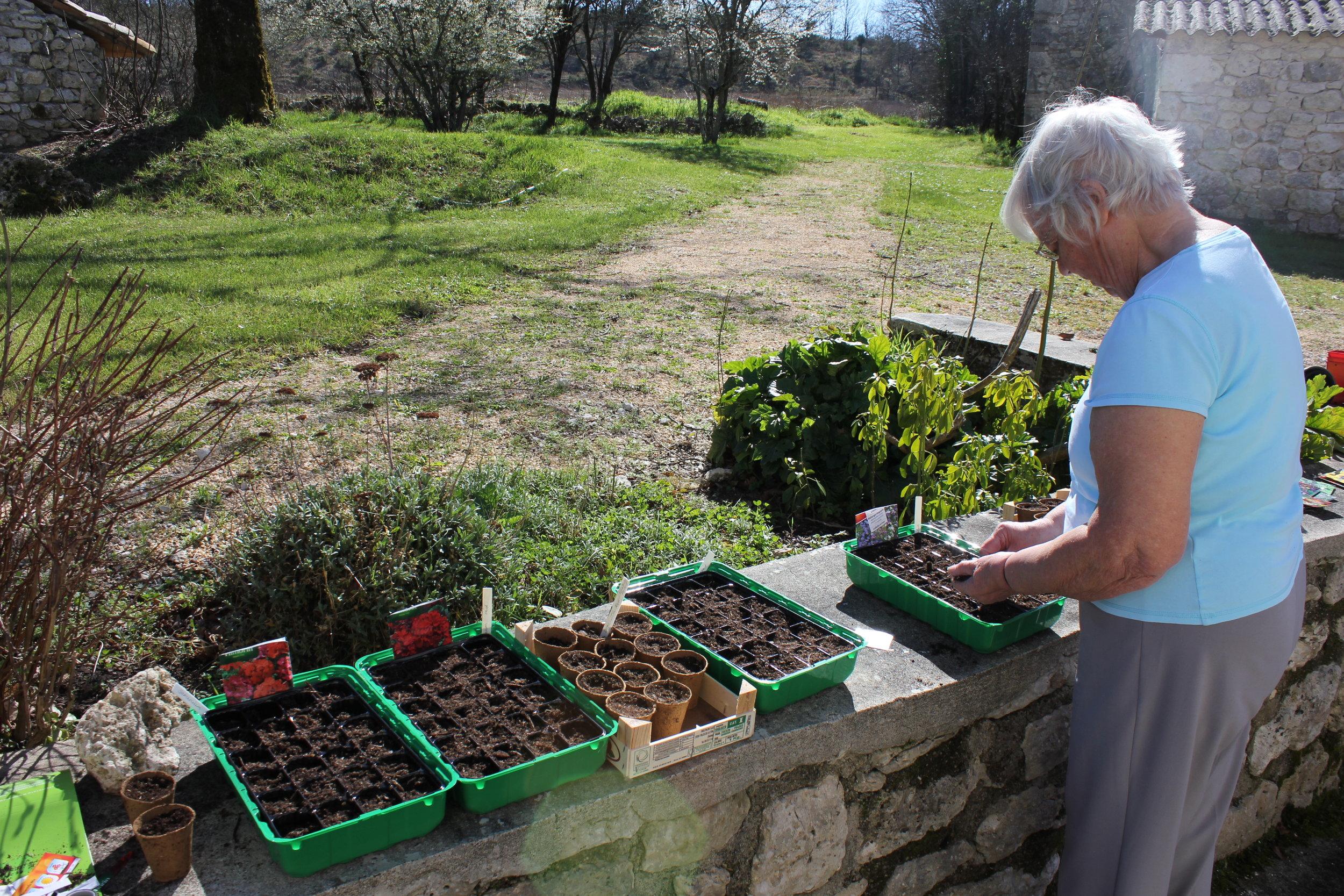 Planting the seeds... thanks again Tessa.