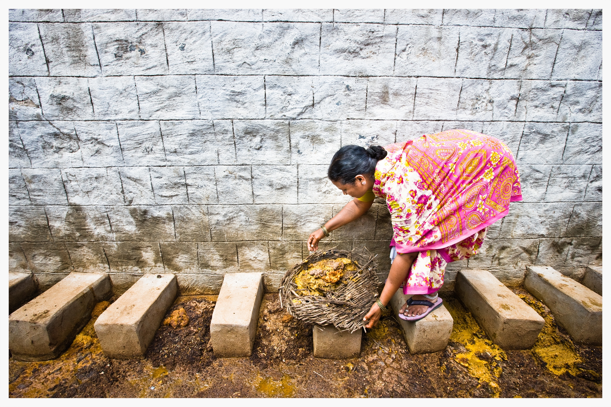 Manual scavenger, Indian Dalits, Being Untouchable. Photo: © Marcus Perkins