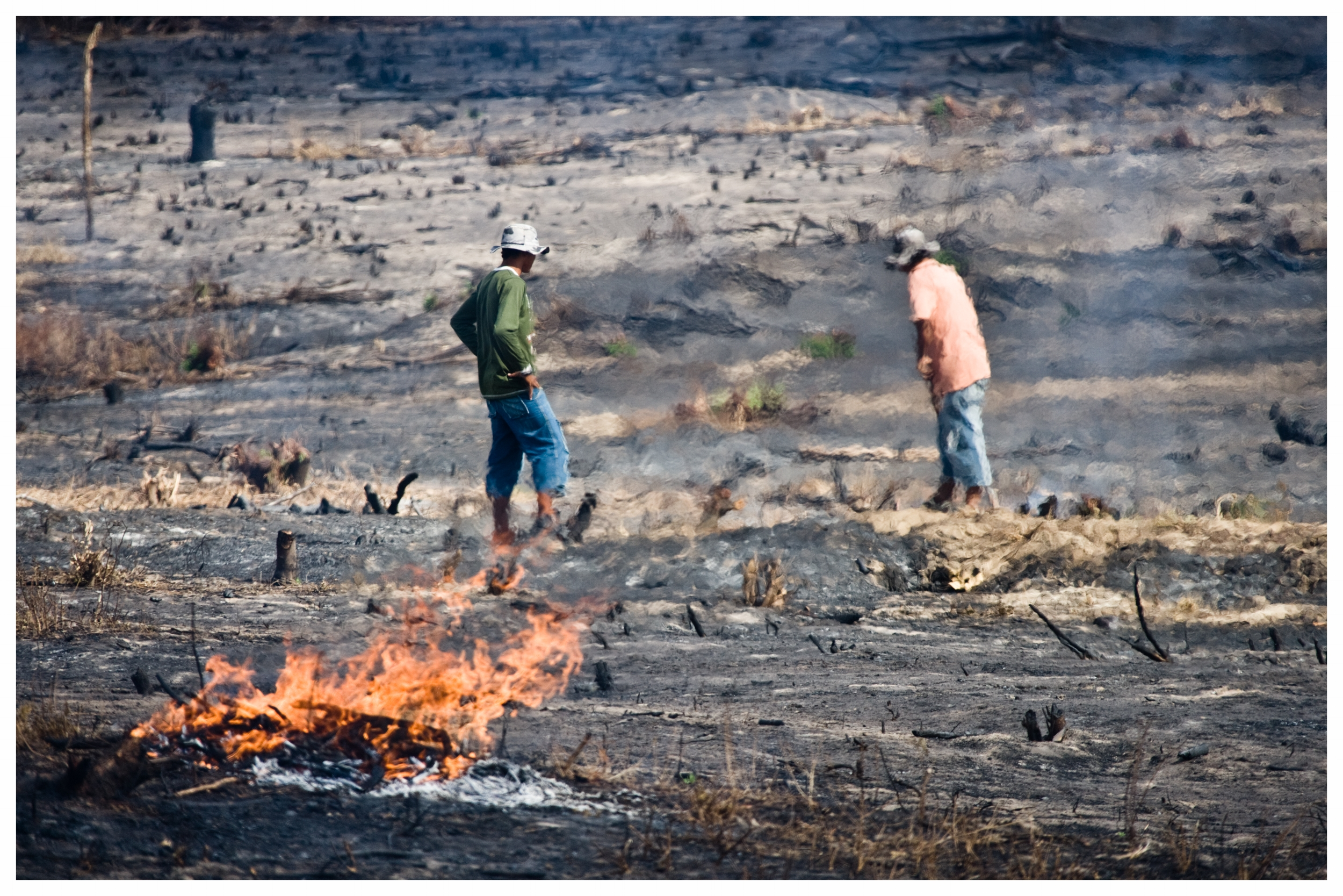 Farmers in north east Brazil clearing land to grow crops. Photo © Marcus Pekrins