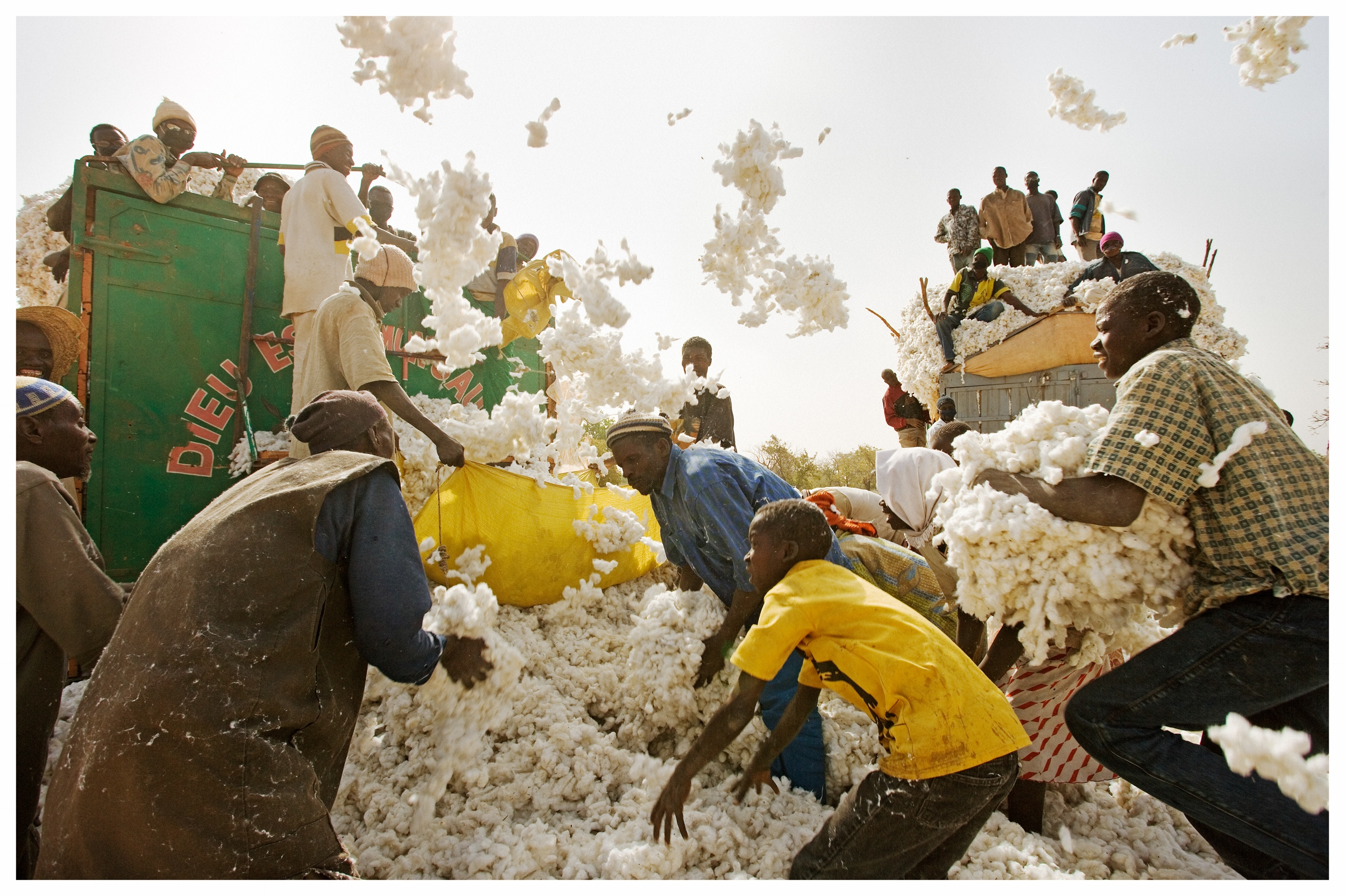 Cotton farmers loading their harvest for market. Southern Burkina Faso. Photo © Marcus Perkins