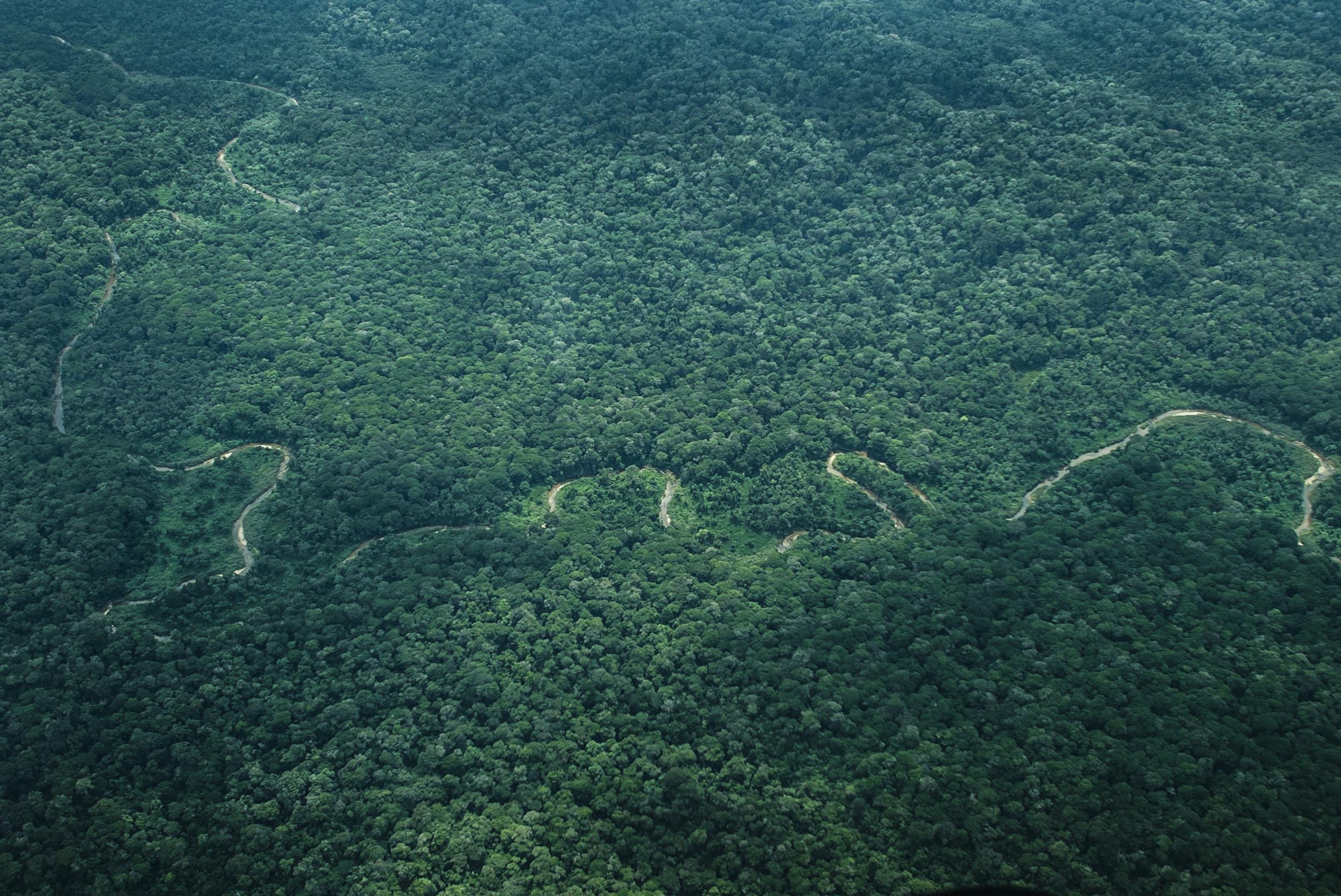 Congo-cover.jpg
