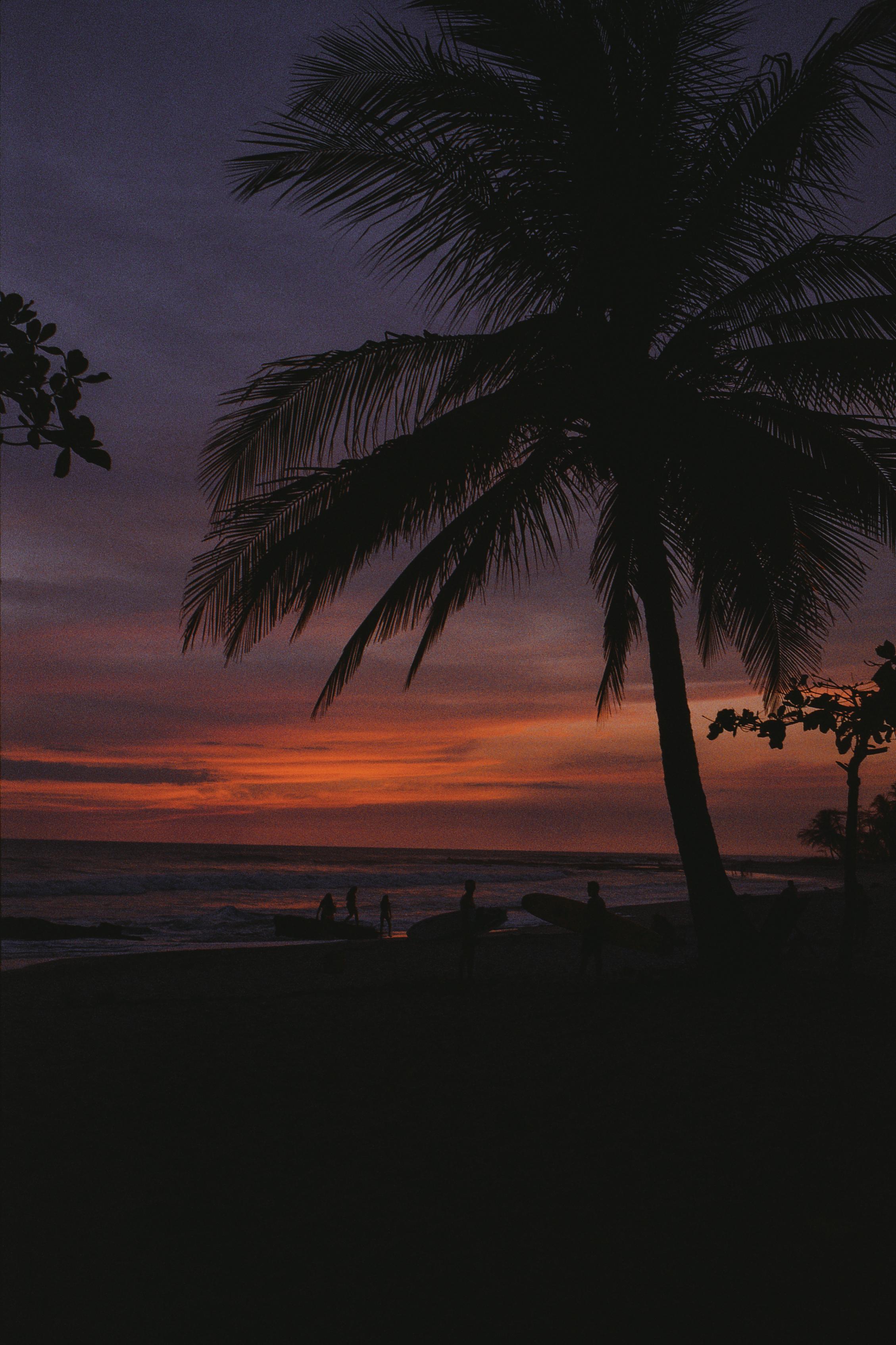 Photos by Hollie Fernando for Pura Vida