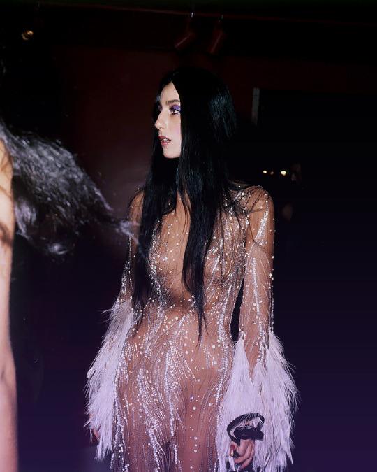 Cher.   Met Gala, 1975