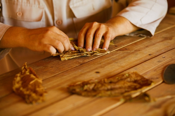 Rolling un puro (hand rolled cuban cigar)