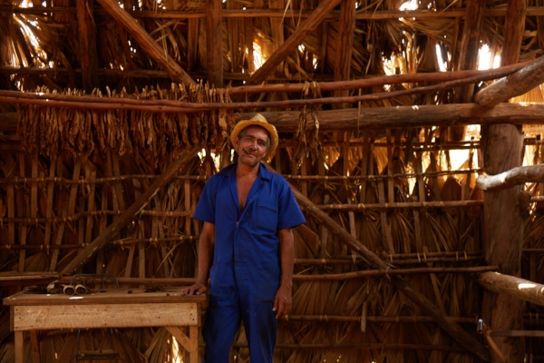 Tabaquero in a handmade structure used for drying tobacco and made of palm fronds