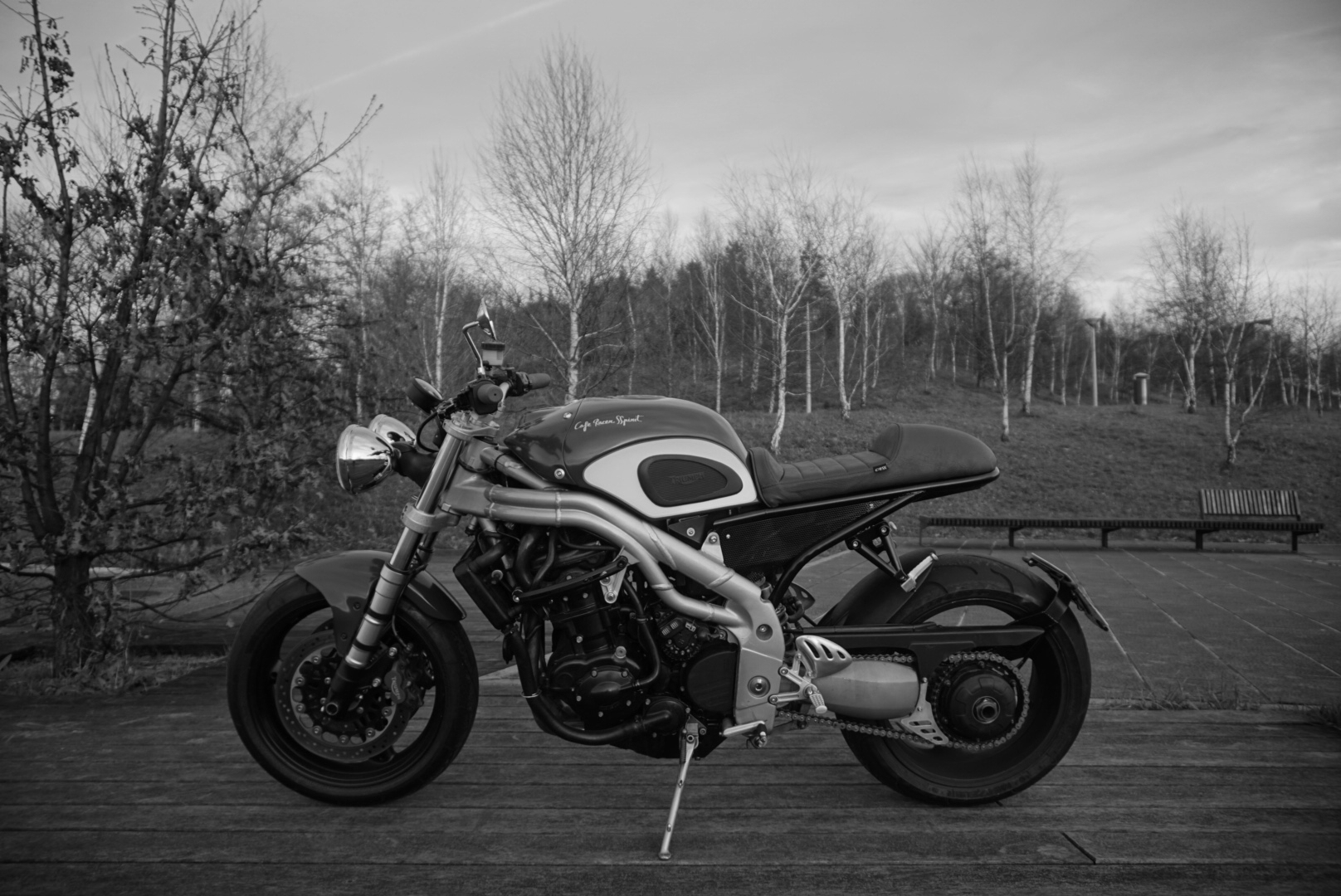 CRSS #34: TRIUMPH SPEED TRIPLE 885i  SOLD