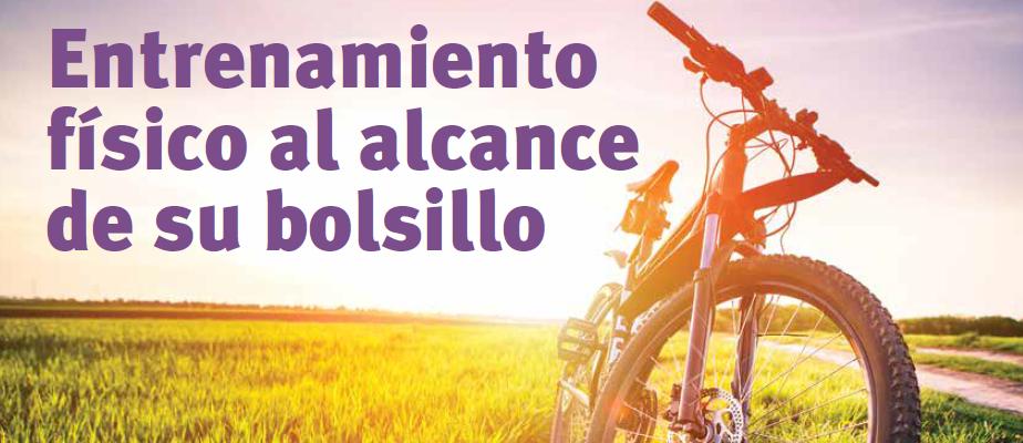 Wellness Newsletter - Spanish