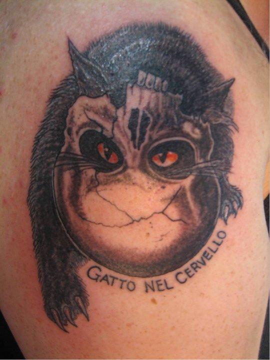Cat Skull.jpg