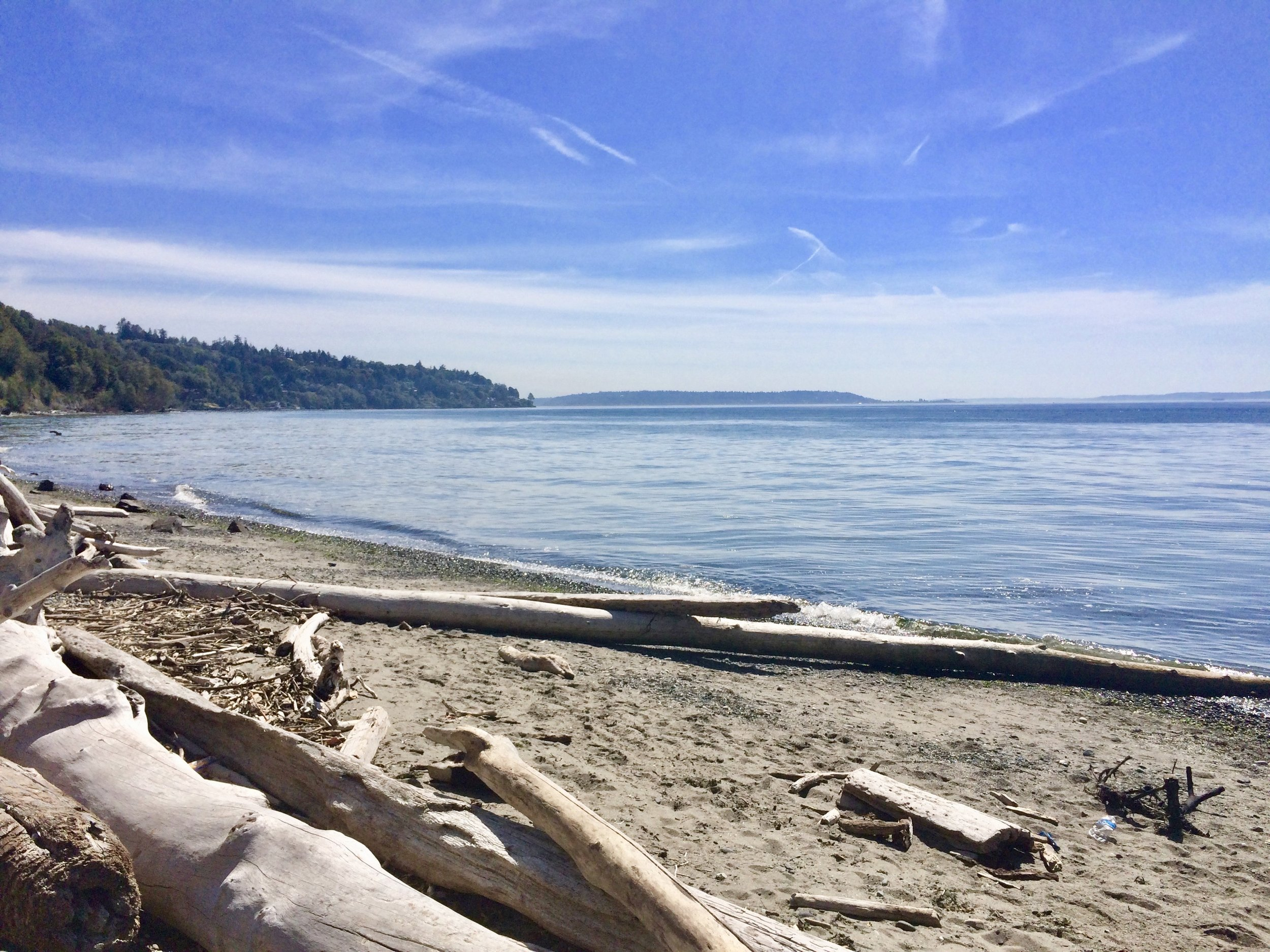 The View from Discovery Park, Seattle Washington