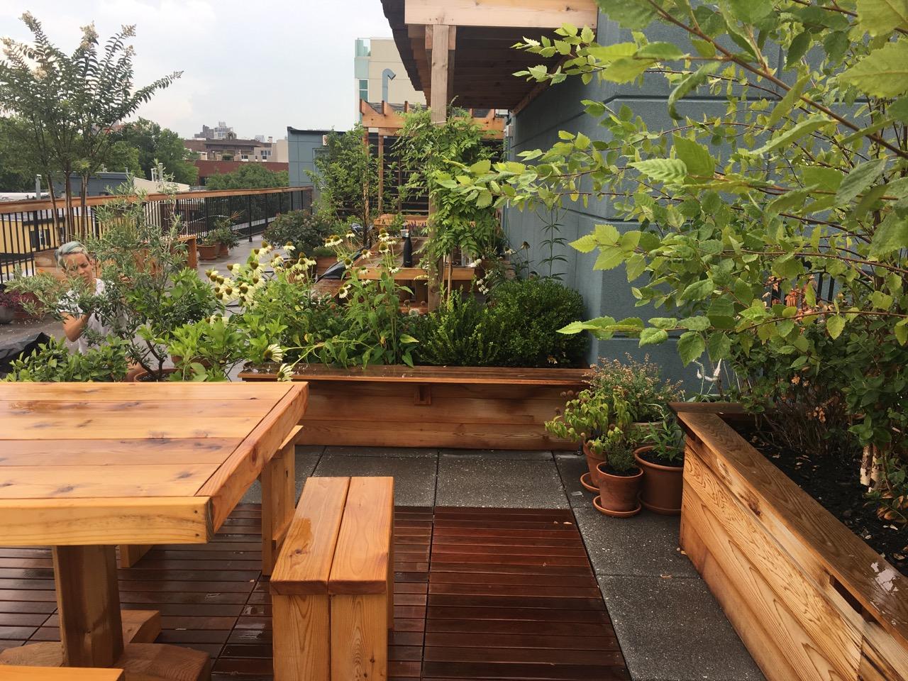 arbor-custom-edibles-rooftop-terrace-garden-by-edible-petals-brooklyn2.jpg