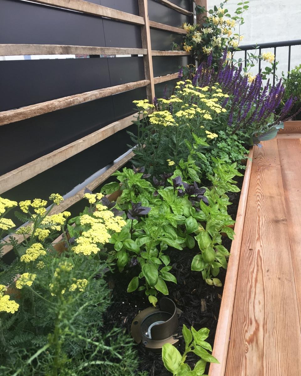 custom-edibles-rooftop-terrace-garden-by-edible-petals-brooklyn8.jpg