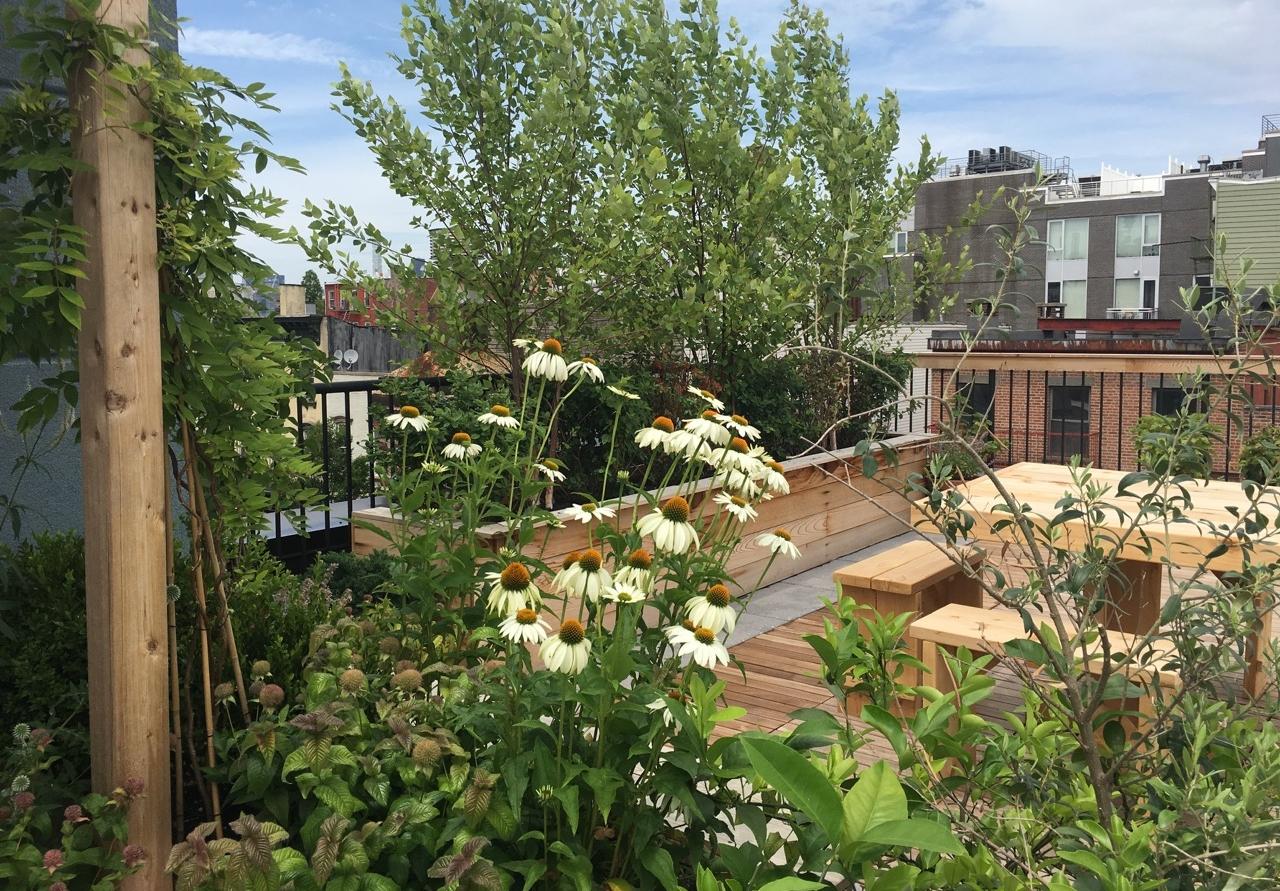 arbor-custom-edibles-rooftop-terrace-garden-by-edible-petals-brooklyn.jpg
