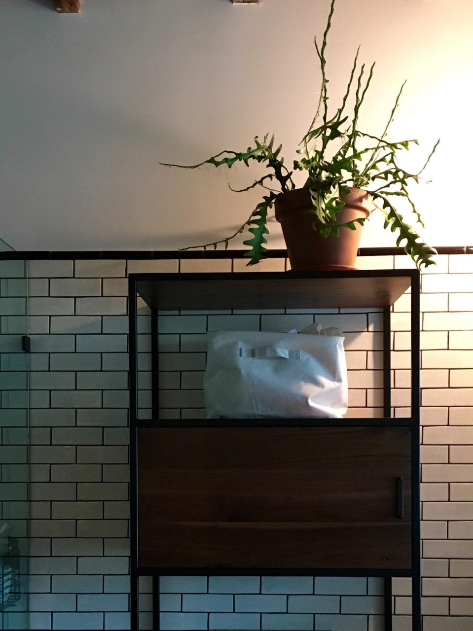 interior-plants-by-edible-petals-6.jpg