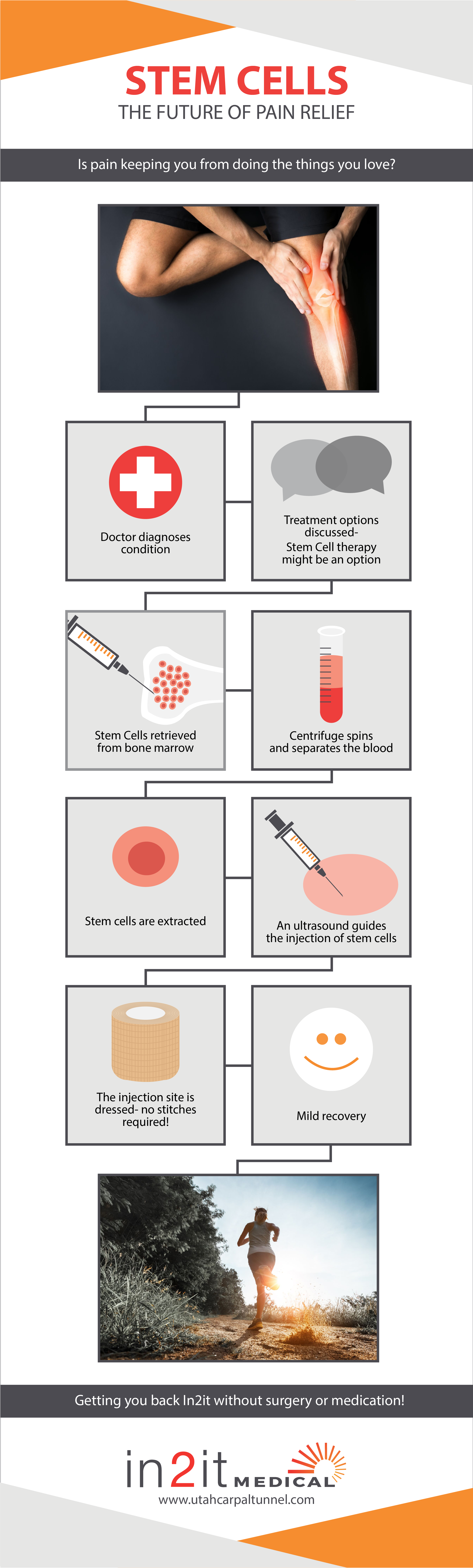 Update stem cell graphic.png