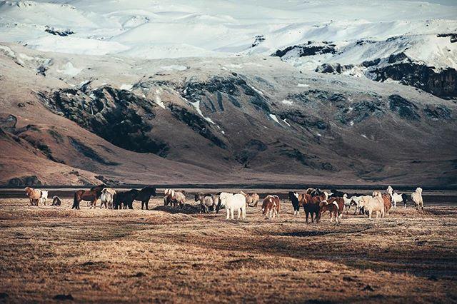 RAW // Iceland's landscape is mesmerizing ...