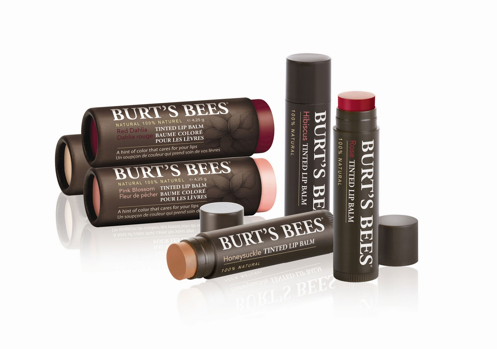 Burt's Bees   Gloss and Chapstick