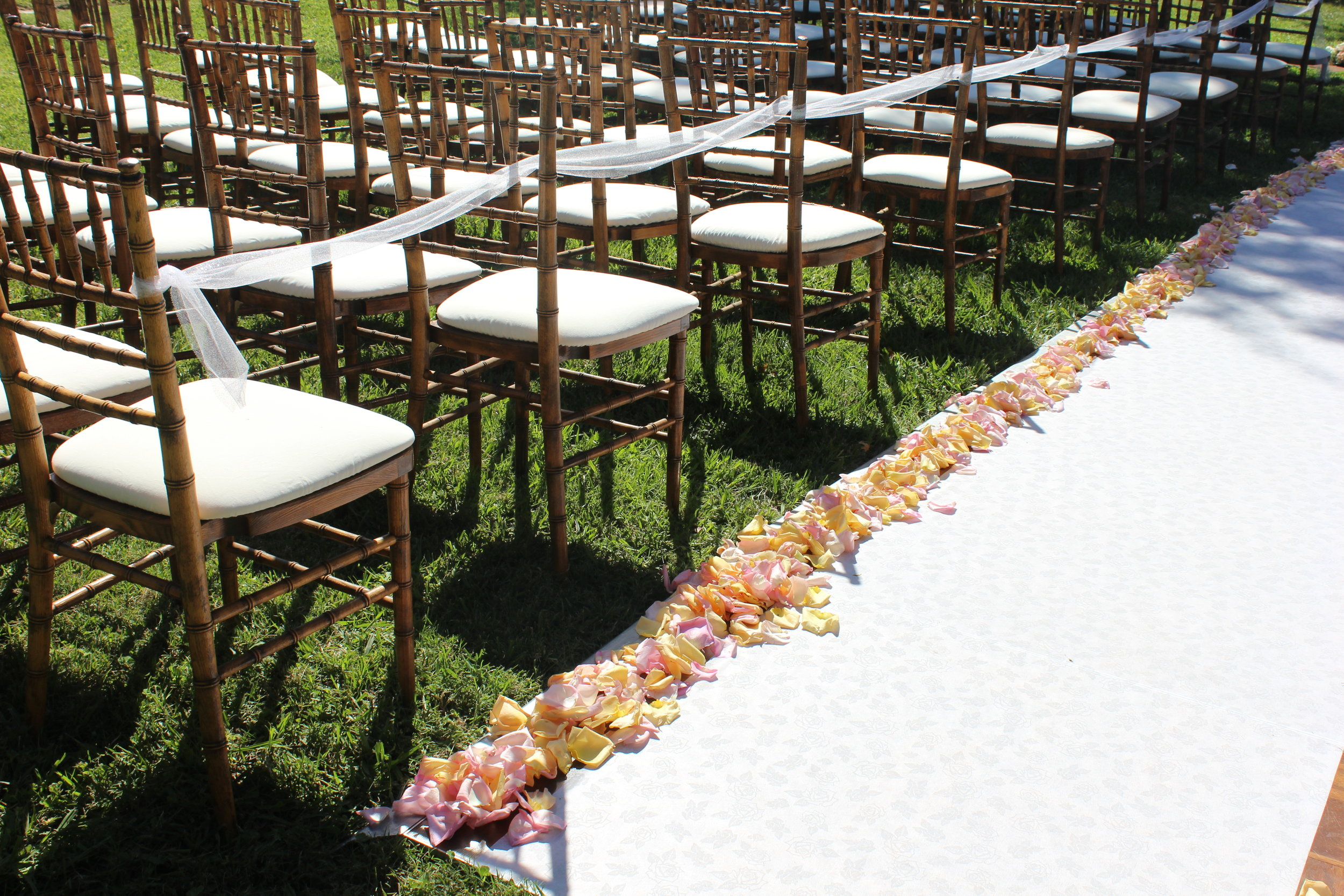 wedding_aisle_rose_petals.JPG