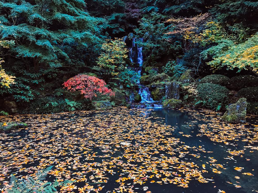 Portland, Oregon - Japanese Garden