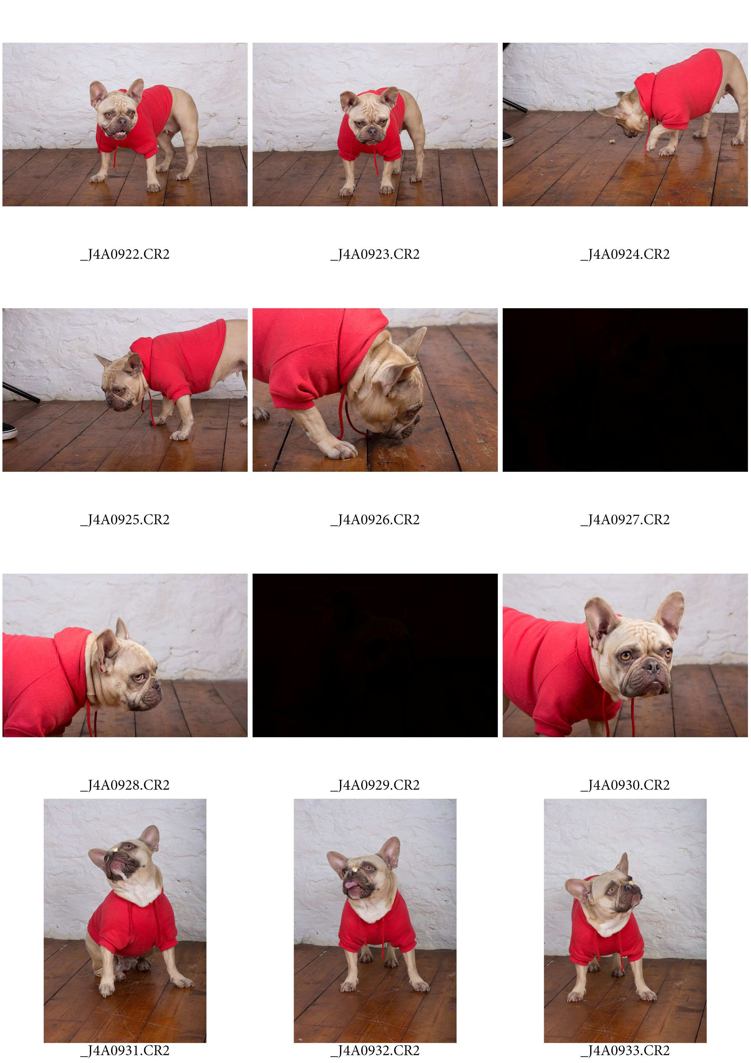 ContactSheet-006 copy.jpg