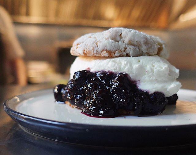 DESSERT // Blueberry shortcake w/ whipped ricotta // #yyj #yyjeats #victoriabc #downtownvictoria #dessert #shortcake