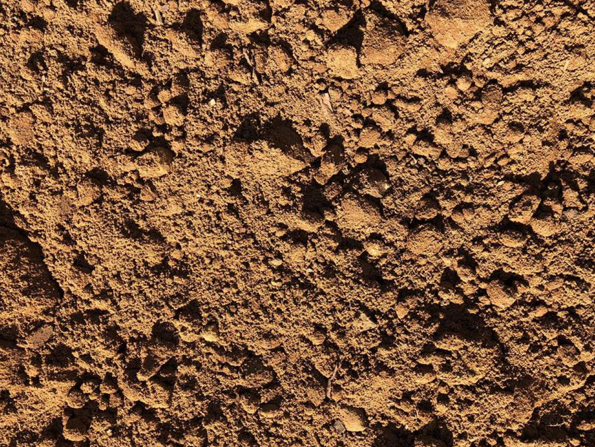 EASTMAN SOIL PRODUCTS: UNSCREENED TOPSOIL