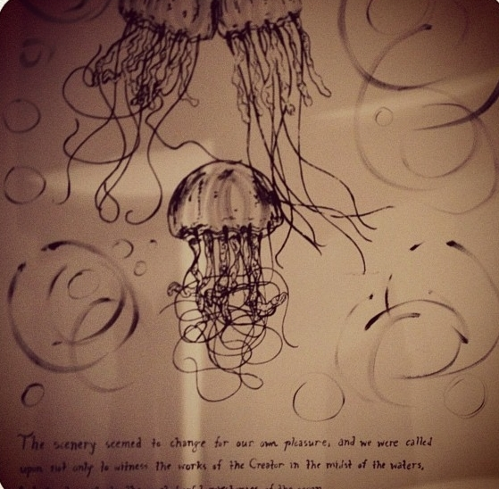 Voyager [Twenty Thousand Leagues Under the Sea]