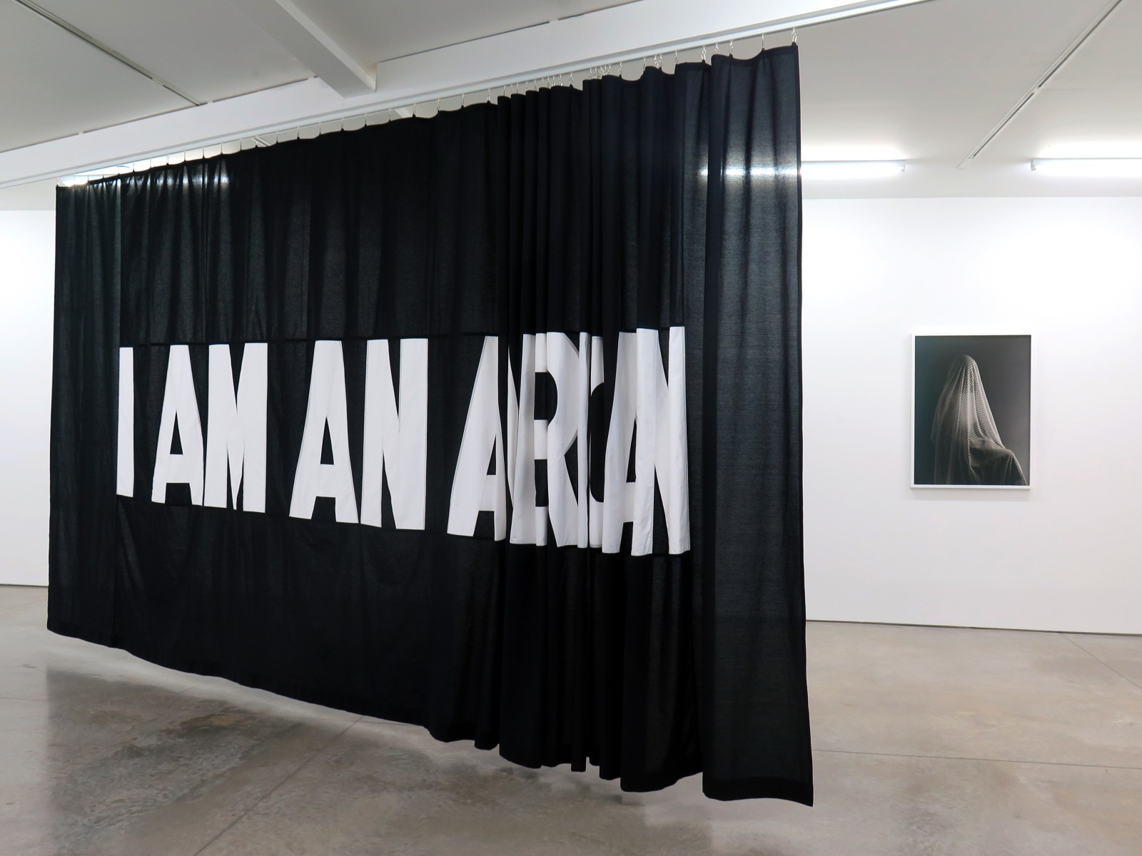 """""""I AM AN..."""" 2017, sewn cotton panel on moveable ceiling track, 9' x 24' and """"Total Transparency Filter (Portrait of N),"""" archival pigment print, 30"""" x 40"""" (Courtesy of the Artist.)"""