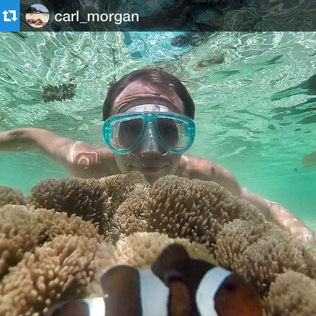#Repost @carl_morgan with @repostapp.