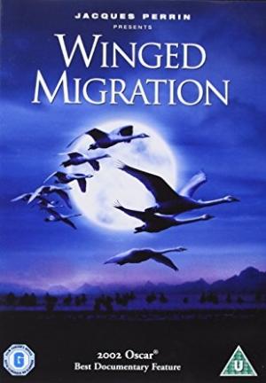 Winged Migration.jpg