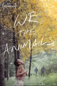 We Are Animals.jpg